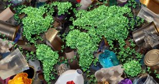 raccolta differenziata end of waste