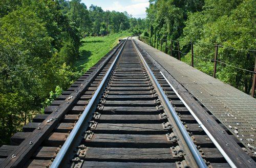 Treno Verde 2017: economia, sostenibilità e informazione scientifica