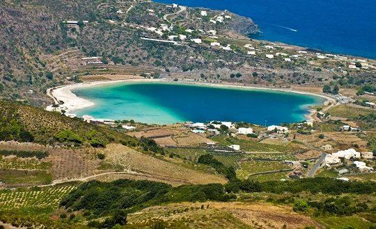 10.000 alberi per Pantelleria: parte il crowdfunding