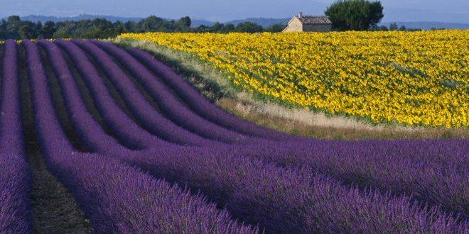 villaggi più belli della provenza