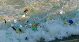 Marine litter: i danni economici, ambientali, sanitari