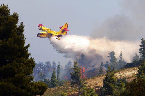 """2017: un anno """"di fuoco"""" per le aree naturalistiche italiane"""