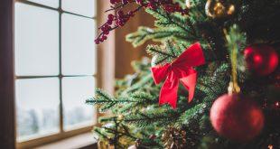 Natale 2017: gli italiani vogliono l'albero vero