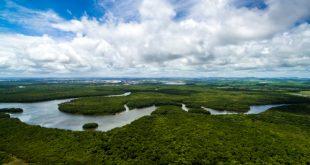 22 aprile 2018: l'Earth Day e il Canopy Project