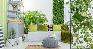 arredamento soggiorno con piante