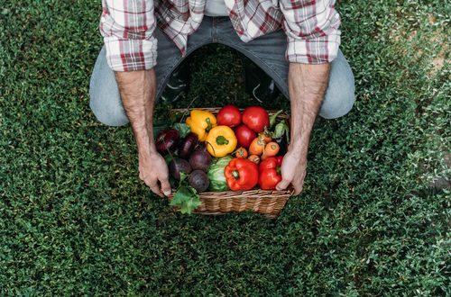 contadino verdura