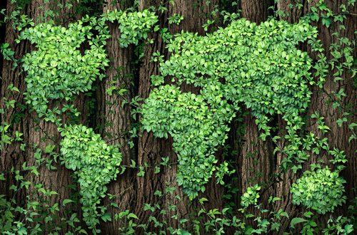 mondo eco green economy